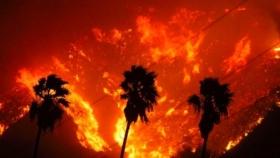 Ученые: Калифорния и