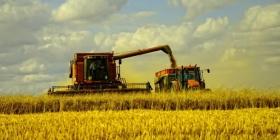 Минсельхоз: урожай зерна