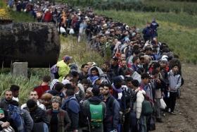 Количество беженцев в